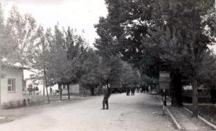 Главна улица (1967)